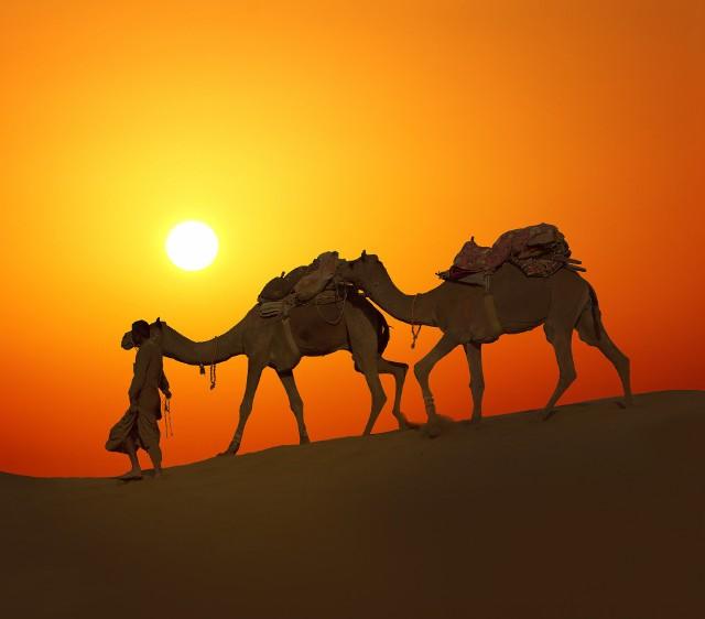 Egipt ze względu na cenę jest bardzo popularnym kierunkiem wśród polskich turystów.