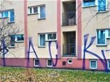 Pseudografficiarz dewastuje Kraków. Mieszkańcy mają dość i proponują nagrodę za jego złapanie