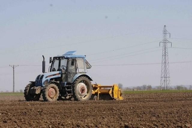 Długi rolników w woj. łódzkim sięgają 23,2 mln zł