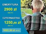 """Czternasta emerytura 2021 - wyliczenia netto. Sprawdź, czy dostaniesz całą """"czternastkę"""" [9.06]"""