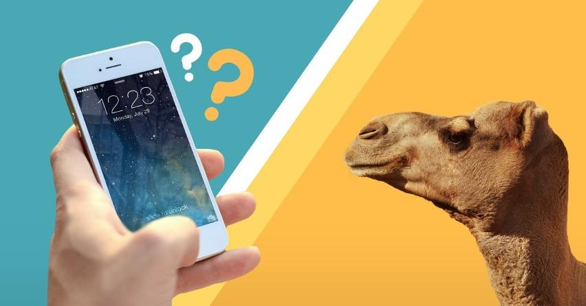 Nie uwierzysz, co można kupić za równowartość nowego Iphone'a! Czy jest wart swojej ceny?