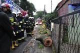 Od wczoraj w Lubuskiem mocno wieje! Strażacy już kilkadziesiąt razy wyjeżdżali do powalonych drzew