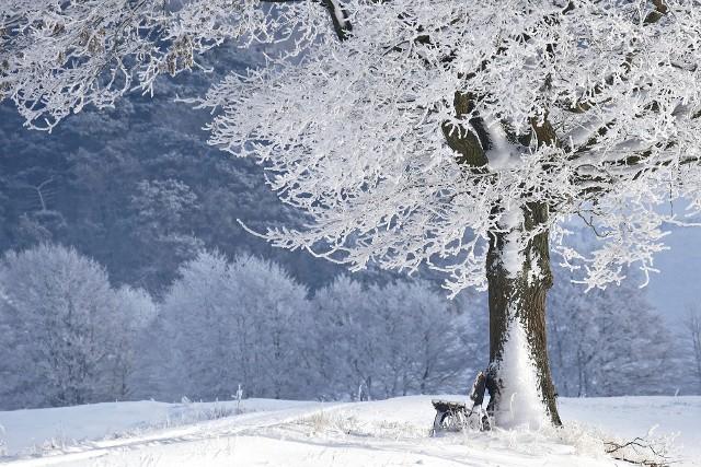 Prawdziwa zima może zacząć się dopiero po Nowym Roku.