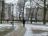 Radni uchwalili regulamin korzystania z koluszkowskiego parku miejskiego