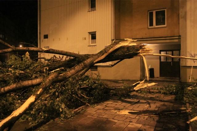 Niedzielna wichura połamała wiele drzew we Wrocławiu
