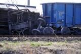 W Gdańsku-Olszynce wykoleił się jeden z wagonów pociągu towarowego [ZDJĘCIA]