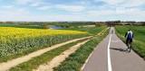 Nowa widowiskowa trasa rowerowa pod Szczecinem, z Przecławia do Karwowa. ZDJĘCIA, MAPA