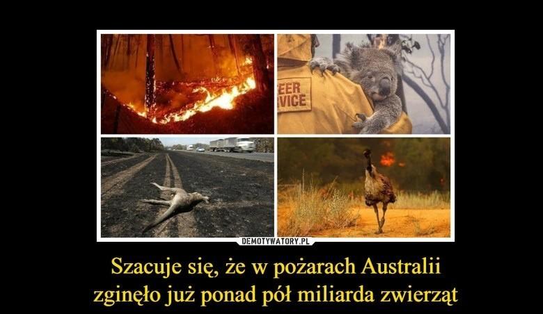 W pożarach trawiących Australię zginęło już blisko 30 osób,...