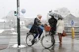 Częstochowa: rower miejski coraz bardziej popularny. I do pracy, i do szkoły