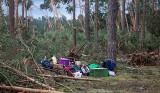 Pomoc dla rolników i właścicieli lasów po nawałnicy