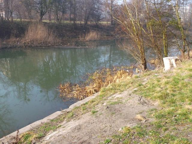 Niskie Łąki - kiedyś istniało tu kąpielisko Oławka. Teraz zalegają tu śmieci