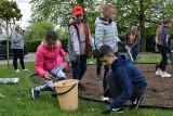 Na Światowy Dzień Pszczół uczniowie z Bierkowa urządzili kwietną łąkę [zdjęcia, wideo]