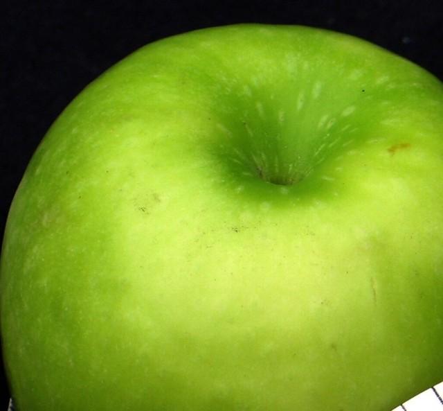 Jabłka na giełdzie kosztują od 1,20 do 1,33 zł.