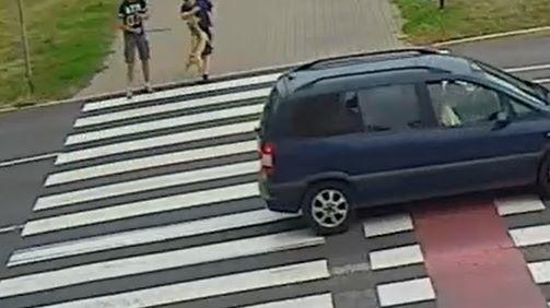 Do pogryzienia doszło przed przejściem dla pieszych przy al. 23 Stycznia w Grudziądzu.