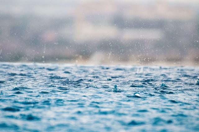50 tys. złotych przeznaczył Lublin na miejski program wsparcia budowy systemów odzyskiwania wody deszczowej