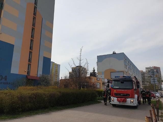 Zwłoki 48-letniego łodzianina znaleźli w czwartek rano na klatce schodowej mieszkańcy jednego z wieżowców przy ul. Czernika w Łodzi. Mężczyzna prawdopodobnie targnął się na własne życie. CZYTAJ DALEJ NA KOLEJNYM SLAJDZIE>>>>