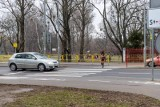 Białystok. Mieszkańcy chcą sygnalizacji świetlnej przy Wierzbowej. Miasto nie ma pieniędzy na inwestycję w budżecie 2021