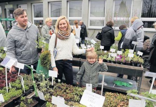 Na kiermasz do Zaścianek Emilia i Kamil Rucińscy zabrali syna Kajetana, by pomagał wybierać rośliny.
