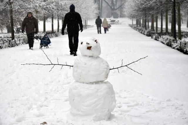 Zima za pasem! W ostatnich dniach mocno się ochłodziło, temperatury spadły nawet o kilkanaście stopni w porównaniu z ubiegłym tygodniem. Czy idzie zima? Kiedy spadnie śnieg? Znamy odpowiedzi na te pytania. Zobacz na kolejnych slajdach prognozę długoterminową na cały listopad - posługuj się klawiszami strzałek, myszką lub gestami.