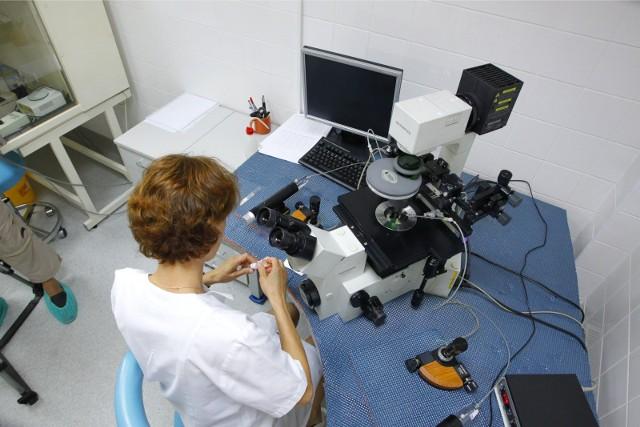 Klinika przy ulicy Polnej w Poznaniu jest jedną z placówek, która realizuje miejski program in vitro. Obecnie trwa konkurs, który ma wyłonić placówki, które będą go kontynuować w latach 2021-2024