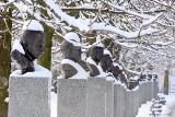 Aleja Sław w Kielcach w zimowej szacie prezentuje się cudownie! Zobacz zachwycające zdjęcia