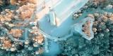 Wieża widokowa w Krynicy-Zdroju zimą wygląda obłędnie. Atrakcja jest bardzo popularna także na Instagramie [ZDJĘCIA]