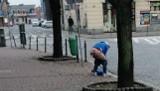 Nowy Targ. Obsceniczne zachowanie w centrum miasta. Ktoś... wypróżnił się na Rynku