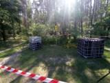 Ktoś podrzucił odpady chemiczne w lasach Nadleśnictwa Gniewkowo. Zobaczcie zdjęcia