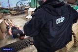 Mazowieckie: Funkcjonariusze CBŚP i KAS zlikwidowali dwie nielegalne fabryki papierosów