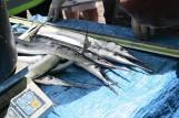 Belonada w Pucku 2017. Ryba, która inspiruje i smakuje [ZAPOWIEDŹ]