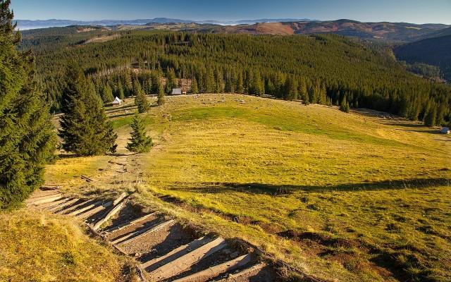 Rusinowa PolanaTo urokliwa polana reglowa w polskich Tatrach Wysokich. Polana znajduje się pomiędzy Gęsią Szyją (1489 m) a Gołym Wierchem (1205 m), na grzbiecie łączącym Tatry z Pogórzem Bukowińskim. Położona jest na wysokości około 1180-1300 m n.p.m.W okolicy polany żyją jelenie, sarny, zające, lisy, czarne wiewiórki i kruki. Bywają także niedźwiedzie.