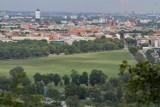 Kraków. Jakie wydarzenia powinny odbywać się na Błoniach?