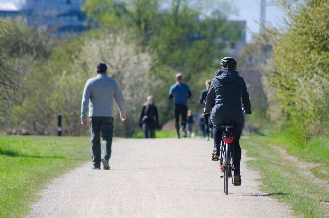 W rankingu dostępności ścieżek rowerowych w przeliczeniu na mieszkańca znalazły się dwa miasta z województwa kujawsko-pomorskiego