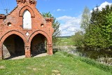 To miejsce jest idealne na pieszą lub rowerową wycieczkę. Wilcze Błota Kościerskie przyciągają pięknymi widokami i położeniem