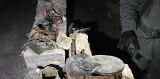 KOSTRZYN NAD ODRĄ. Kolejne odkrycie w kostrzyńskich piwnicach na Starym Mieście. Poszukiwacze trafili na pomieszczenie niemieckiego sztabu?