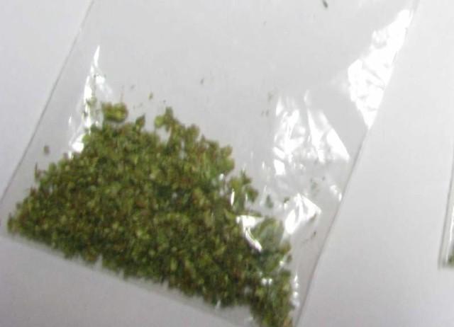 Zabezpieczoną substancję poddano badaniu które wykazało że susz roślinny jest marihuaną.