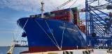 DCT w Gdańsku. Pierwszy z serii nowych statków Cosco w gdańskim terminalu. Zobacz kontenerowiec Cosco Shipping Galaxy! [zdjęcia]