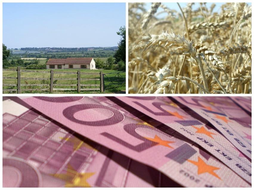 Na polską wieś trafią kolejne pieniądze z Unii Europejskiej