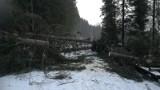 Halny w Tatrach. Zamknięta droga do Morskiego Oka. Zatarasowały ją powalone drzewa