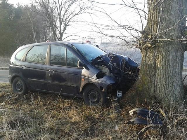 W Dobrojewie pod Skwierzyną osobowy renault roztrzaskał się na drzewie.