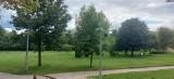 Znamy szczegóły rewitalizacji Parku Jana Pawła II w Brodnicy. Będą nowe ławki, wyposażenie placu zabaw, budki lęgowe i... wycinka 80 drzew