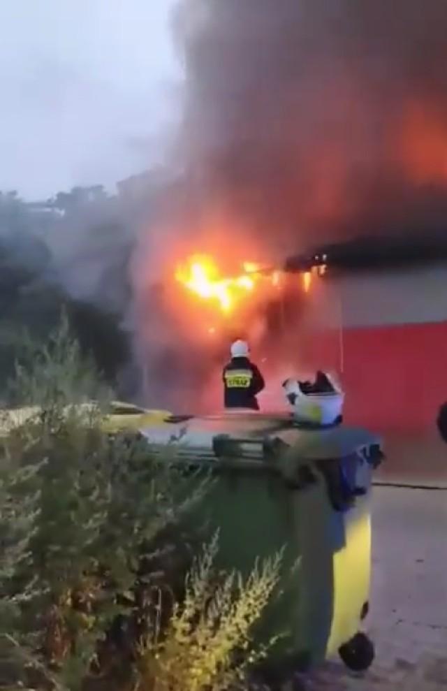 """Od godziny 5 rano strażacy walczyli z pożarem w sklepie Pepco w Działoszynie. Ogień udało się już opanować, ale straty są ogromne. Straż podejrzewa, że przyczyną było podpalenie! Czytaj dalej na kolejnym slajdzie: kliknij strzałkę """"w prawo"""", lub skorzystaj z niej na klawiaturze komputera."""