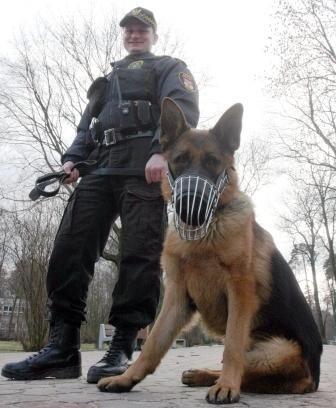 Drago już od tygodnia patroluje nasze ulice. Zapoznaje się z terenem. Póki co nie miał jeszcze żadnych interwencji.