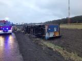 Wypadek w Dalachowie. Wywrócił się tir przewożący drewno [ZDJĘCIA]