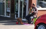 Obcokrajowcy żebrali pod marketem i wykorzystywali do tego psy, które nie miały wody. Sprawą zajmuje się policja
