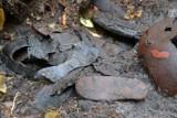 Sztutowo: Oględziny miejsca odkrycia butów więźniów niemieckich obozów zagłady