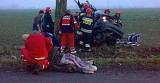 Wypadek w Sławicach pod Opolem. Volkswagen golf roztrzaskał się o drzewo. Nie żyją dwie nastolatki