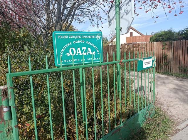 Ogród OAZA skupia ponad 800 działkowców. Część z nich chce wyjść z PZD