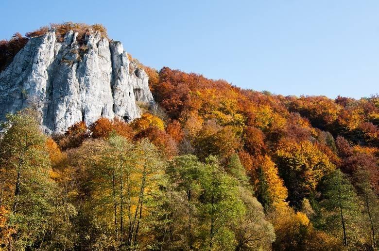 Dolina Będkowska to największa z dolin Jury...