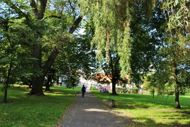Park Sowińskiego w Zielonej Górze przechodzi zmiany. Zaczęło się od drastycznej wycinki drzew. Mieszkańców zaniepokoiła ta sytuacja. Poważnie zaczęli zastanawiać się nad tym, jak ma wyglądać modernizacja tego miejsca. Jak tłumaczył ostatnio wiceprezydent Krzysztof Kaliszuk, wycięte zostały te drzewa, która były chore, spróchniałe, zagrażały bezpieczeństwu mieszkańców, a także np. świerki, które mieszkańcy po świętach sami tu nasadzili. Nie znaczy to, że zieleni tu zabraknie. Będą nowe nasadzenia drzew i krzewów. O tym, jak zmieni się park Sowińskiego przekonamy się za kilka miesięcy. Prace mają zakończyć się w kwietniu 2018 r. Ta odpowiedź jednak nie wszystkich satysfakcjonuje. Uważają, że piękne miejsce zostało zniszczone. Jak dawniej wyglądał park Sowińskiego przed wycinką drzew? Zobaczcie sami! Ta odpowiedź jednak nie wszystkich satysfakcjonuje. Uważają, że piękne miejsce zostało zniszczone. Jak dawniej wyglądał park Sowińskiego przed wycinką drzew? Zobaczcie sami! Zobacz również: Rzeź drzew obok Galerii Tesco w Opolu źródło: NTO/x-news